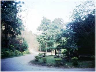 fall_19_3